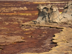 Dallol is a magical region and we were glad to undertake the herculean effort to reach this place