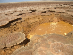 Small pools of potassium surround Oily Lake. The Afar people bring water bottles to fill here. They use the water as a form of skin medication