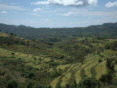 The terraced fields of Konso earned UNESCO heritage status as it shows how the community adapted to its dry, hostile environment to thrive