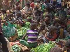 Busy Key Afar market scene