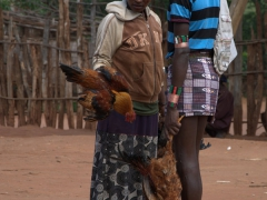 A woman examining a Banna man's chickens at the Dimeka Market