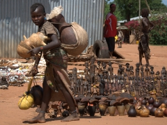 A young trader brings half calabash gourds to sell at the Dimeka Market