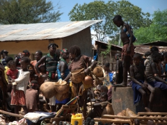 The Saturday Dimeka market is one of the region's best, not to be missed if in the Omo Valley