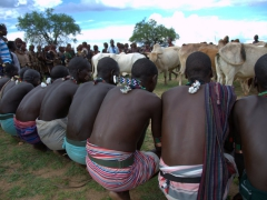 Rear view of the scene unfolding at the beginning of the bull jumping ceremony