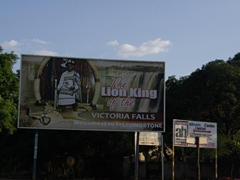 "What a welcome into Victoria Falls with a personal greeting from ""The Lion King"""