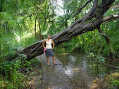 Becky is not dressed for the torrential down pouring to come; Victoria Falls footpath