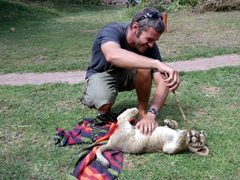 Robby's cat allergies didn't kick in after playing around with lion cubs all morning