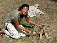 Becky loved playing with the lion cubs, which are adorably cute with their distinct personalities at 3 months of age