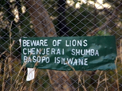Signpost warning trespassers to beware of lions; Antelope Park's Stage II area