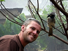 An African Grey Hornbill is mesmerized by its reflection in Robby's sunglasses; Kuimba Shiri Bird Park