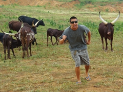 Luke strikes a pose of running for his life from these long horned cows; lunch stop just across the equator
