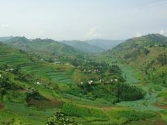 Snapshot of the gorgeous scenery we drove through on our way to Lake Bunyonyi