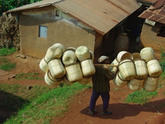 A man carries a heavy load of grass baskets; Lake Bunyonyi