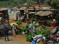 Plantains for sale by the roadside; Kampala