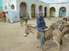 A friendly Harar boy straddles his donkey backwards