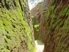 Moss covers this rock hewn pathway leading to another of Lalibela's churches