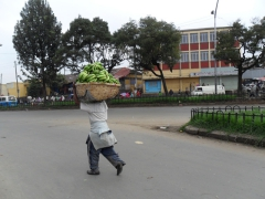 A man carries a basket of plantains to sell at the outdoor market; Addis Ababa