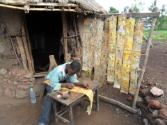 A young boy works on goat skinned religious scrolls; Lalibela