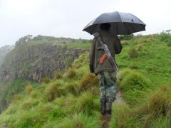 An AK-47 strapped to his back, our Simien Mountain guard uses an umbrella to keep the rain off