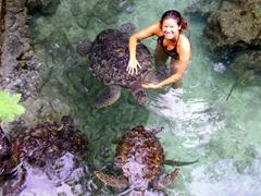 Becky smiles as she plays with three giant green sea turtles; Baraka Aquarium on Zanzibar