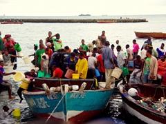 The chaotic scene of early morning at the fish market; Zanzibar