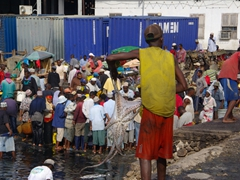 A fisherman prepares to wallop an octopus; Zanzibar Fish Market