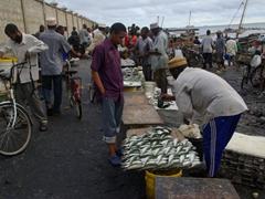 Early morning scene at the Zanzibar Fish Market