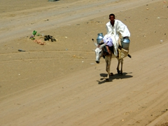 A Sudanese man transporting aluminum milk jugs atop his donkey