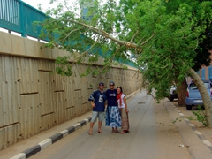 Lucky, Becky and Ichiyo pose in the middle of a Khartoum road where a low slung tree makes for difficult driving conditions (we saw countless cars and trucks barely scrape by)
