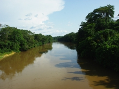 Gabon struck us with its natural beauty, complete with plenty of virgin forests and plentiful rivers