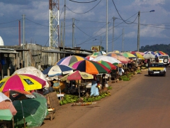 Brightly colored umbrellas dot the market section of Oyem