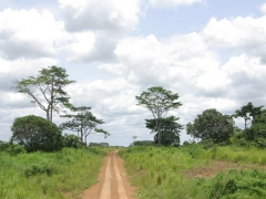 The main road from N'Dende to the Congo border town of Doussala