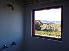 Shower window view of Trawal's pretty vineyards