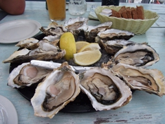 A dozen fresh oysters were a mouth watering delight; Knysna
