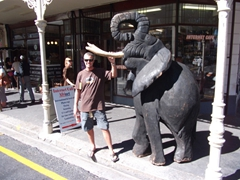 Robby poses next to a massive wooden elephant on Long Street; Cape Town