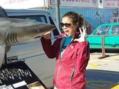Becky strikes a silly pose with a shark; Hout Bay