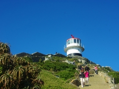 Cape Point Lighthouse (beware of the feisty baboons!)