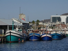Fishing boats line the harbor of Cape Town's waterfront