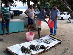 Fishermen selling their wares; next door to Kaz Kreol pizzeria
