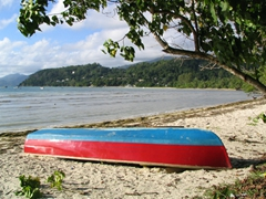 Colorful fisherman's boat on a typical Seychellois beach