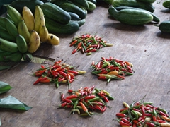 These hot chilies pack a punch!