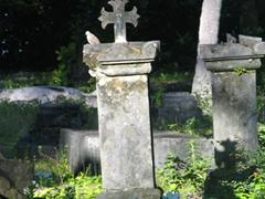 A colonial-era graveyard at L'Union Estate