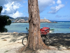 Taking a breather from our lazy bike ride 'round La Digue