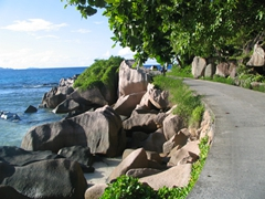 Bike rides on La Digue can be quite picturesque