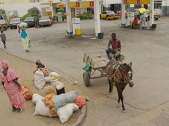 A horse cart pulls out of a Shell gas station; St-Louis