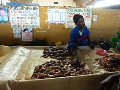 Fish market vendor; Marche Kermel in Dakar