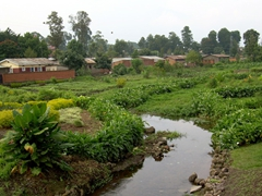 A nice clear stream with well kept gardens in the center of Musanze. This is the clearest water that we have seen flowing through a city in Africa