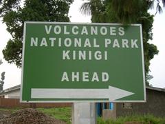 This is where the Rwandan mountain gorillas live!