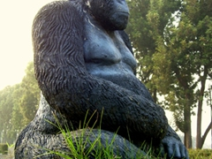 Life size statue of a silverback mountain gorilla; reception center at Volcanoes National Park