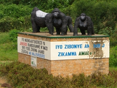 Monument for mountain gorilla conservation on the drive to Kigali